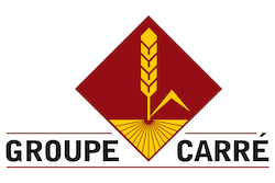 logo-carré.jpeg